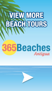 365 Beaches Tours